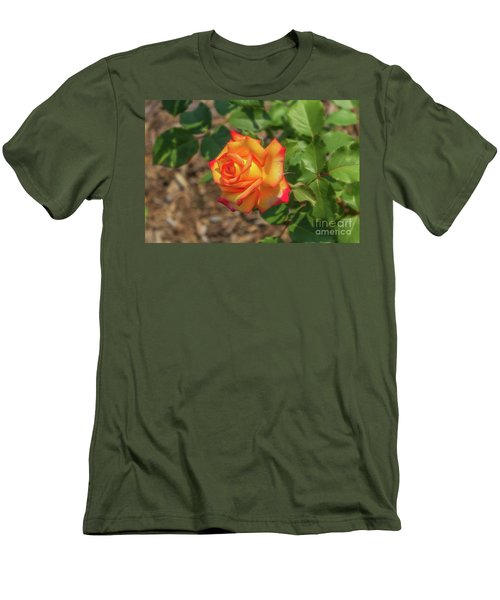 Men's T-Shirt (Slim Fit) featuring the photograph Rosa Peace by Jim Lepard