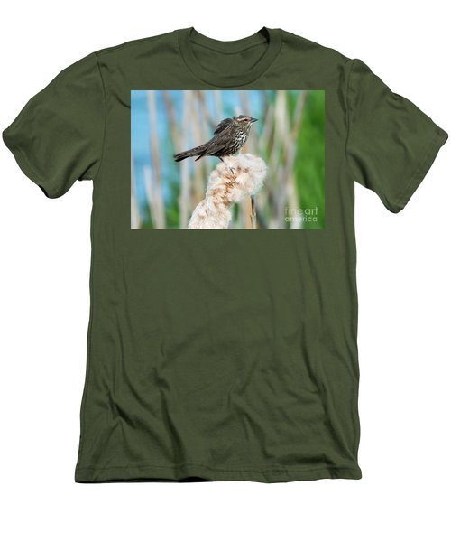 Ruffled Feathers Men's T-Shirt (Slim Fit) by Mike Dawson