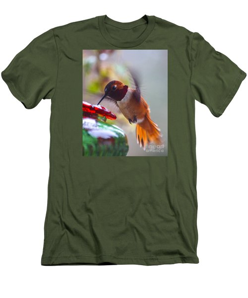 Rufus Hummingbird At The Feeder Men's T-Shirt (Slim Fit) by Chuck Flewelling