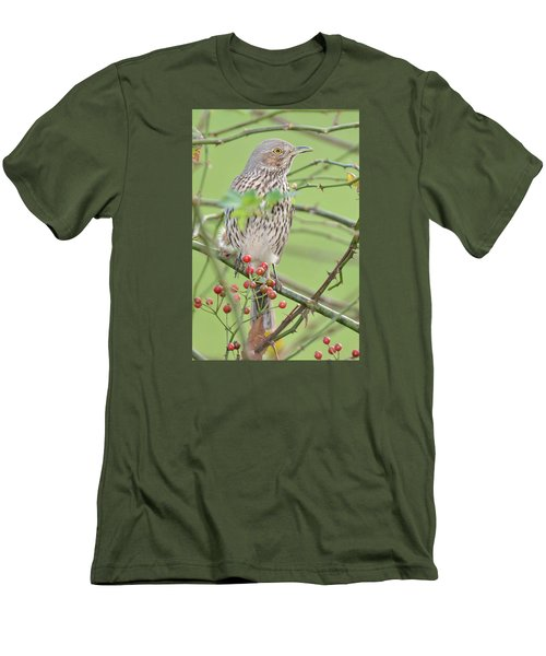 Sage Thrasher Men's T-Shirt (Slim Fit) by Alan Lenk
