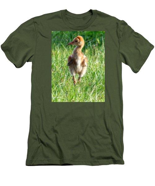 Sandhill Crane Chick 085  Men's T-Shirt (Slim Fit) by Chris Mercer