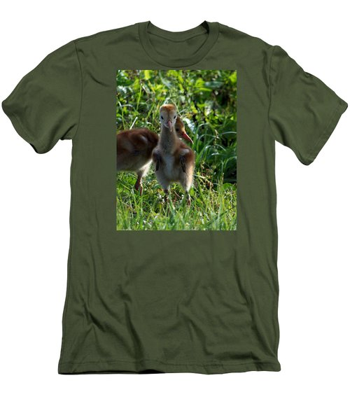 Sandhill Crane Chick 086  Men's T-Shirt (Slim Fit) by Chris Mercer