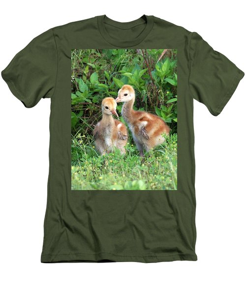 Sandhill Crane Chicks 001 Men's T-Shirt (Athletic Fit)