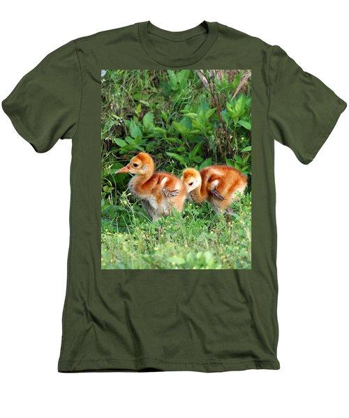 Sandhill Crane Chicks 002 Men's T-Shirt (Slim Fit) by Chris Mercer