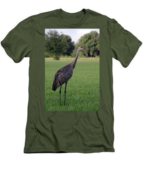 Men's T-Shirt (Slim Fit) featuring the photograph Sandhill Crane by Richard Rizzo