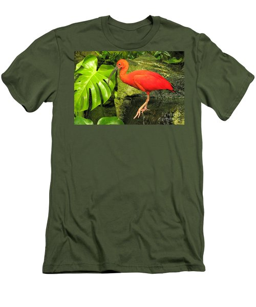 Scarlet Ibis Men's T-Shirt (Athletic Fit)