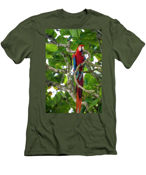Men's T-Shirt (Athletic Fit) featuring the photograph Scarlet Macaw by David Morefield