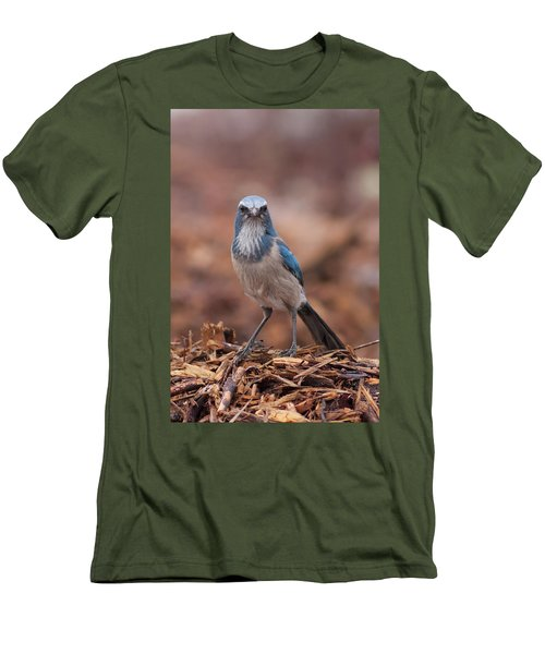 Scrub Jay On Chop Men's T-Shirt (Athletic Fit)