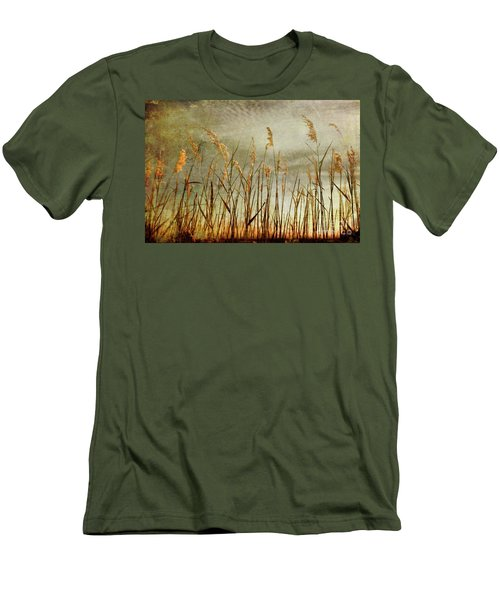 Sea Oats And Sky On Outer Banks Fx Men's T-Shirt (Slim Fit) by Dan Carmichael