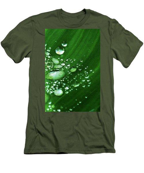 Growing Carefully Men's T-Shirt (Slim Fit) by John Glass