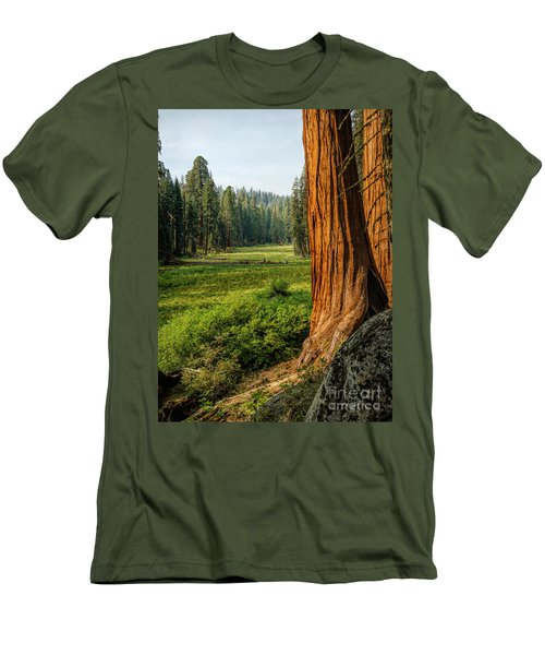 Sequoia Np Crescent Meadows Men's T-Shirt (Athletic Fit)