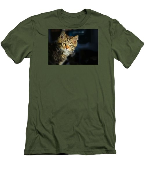 Serious Cat Portrait Men's T-Shirt (Athletic Fit)
