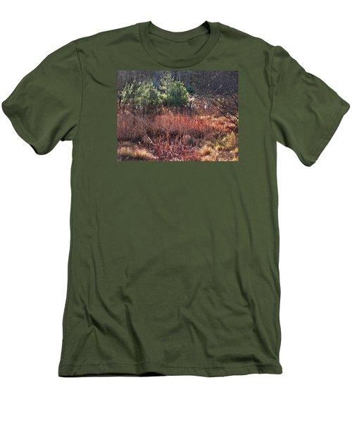 Shimmering Sunlight On The Cattails Men's T-Shirt (Slim Fit) by Joy Nichols