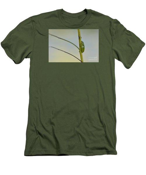 Doris Day Shining Bright Men's T-Shirt (Slim Fit)