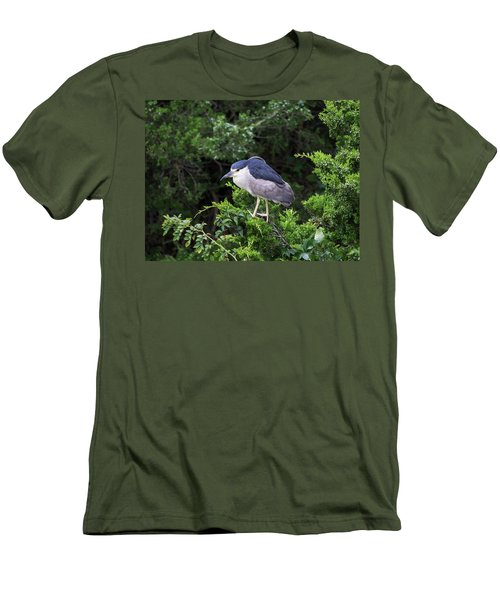 Shore Bird Roosting In A Tree Men's T-Shirt (Athletic Fit)