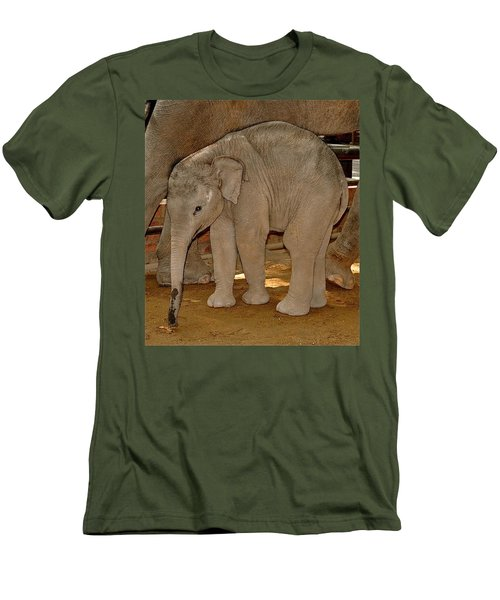 Shy Baby Elephant Men's T-Shirt (Athletic Fit)