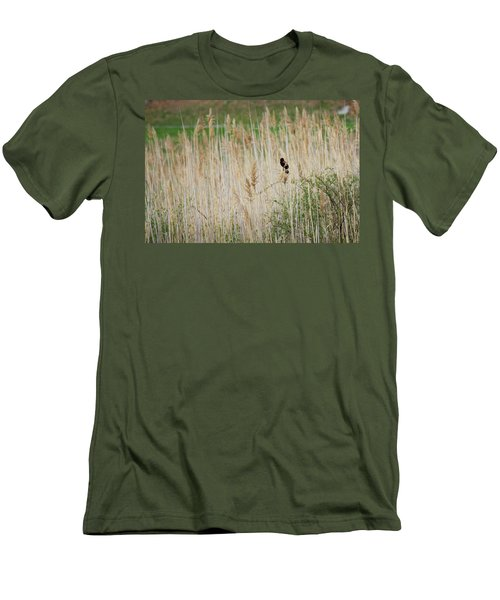 Men's T-Shirt (Slim Fit) featuring the photograph Sing For Spring by Bill Wakeley