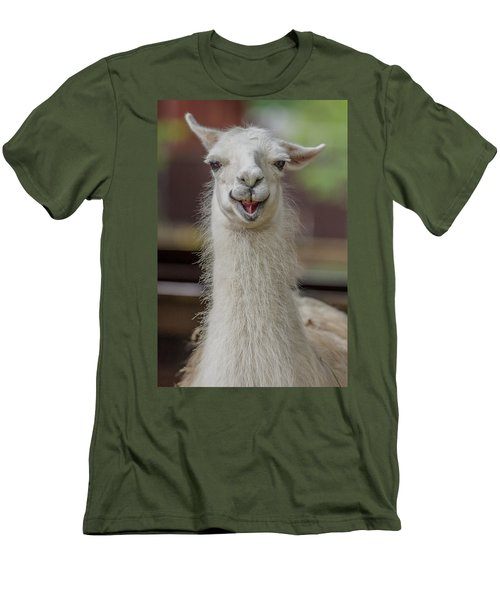 Smiling Alpaca Men's T-Shirt (Athletic Fit)