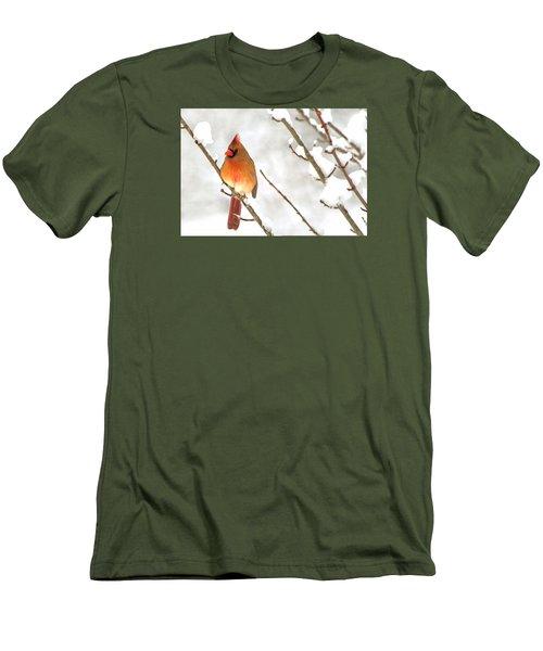 Snow Cardinal Men's T-Shirt (Slim Fit) by Marion Johnson