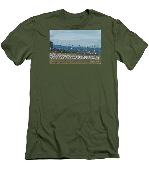 Snow Geese And Tulips Men's T-Shirt (Athletic Fit)