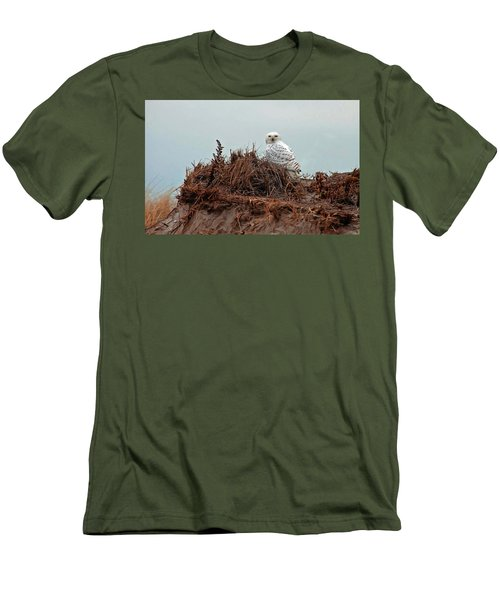 Snowy Owl In Dunes Men's T-Shirt (Athletic Fit)