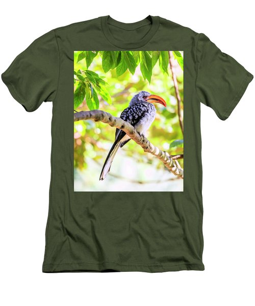 Southern Yellow Billed Hornbill Men's T-Shirt (Slim Fit) by Alexey Stiop