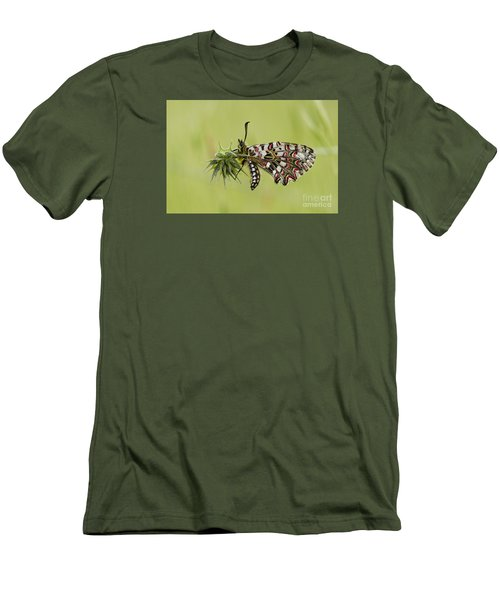 Spanish Festoon Butterfly Men's T-Shirt (Slim Fit) by Perry Van Munster