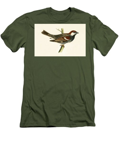 Spanish Sparrow Men's T-Shirt (Slim Fit) by English School