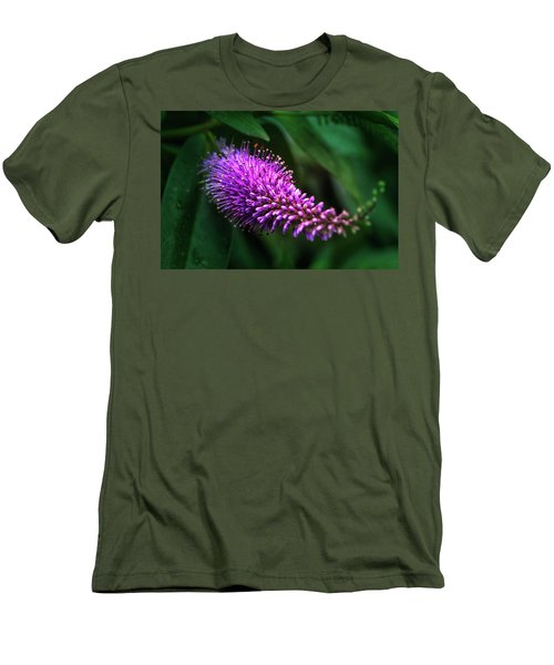 spring beautiful flowers callistemon in subtropics of Russia Men's T-Shirt (Athletic Fit)