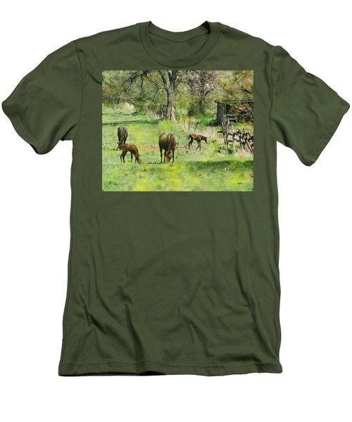 Spring Colts Men's T-Shirt (Athletic Fit)