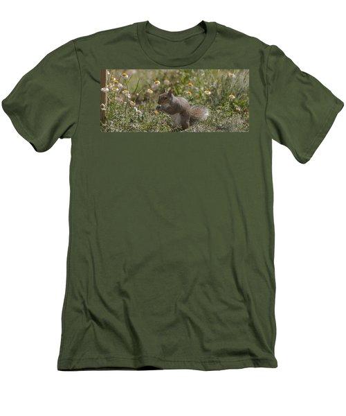 Spring Squirrel Men's T-Shirt (Slim Fit) by Diane Giurco