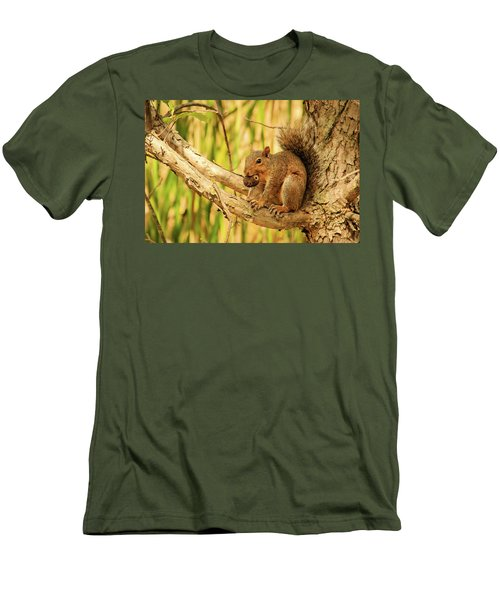 Squirrel In A Tree In The Marsh Men's T-Shirt (Slim Fit)