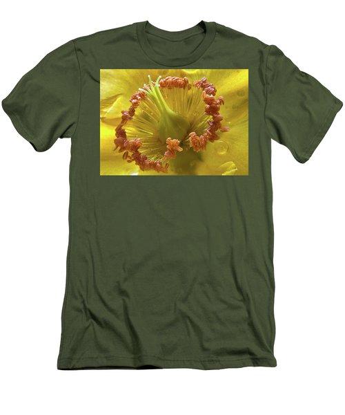 St Johns Wort Flower Centre Men's T-Shirt (Athletic Fit)