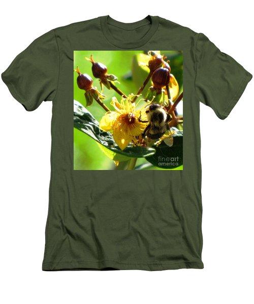 St. John's Wort Men's T-Shirt (Slim Fit) by Melissa Stoudt