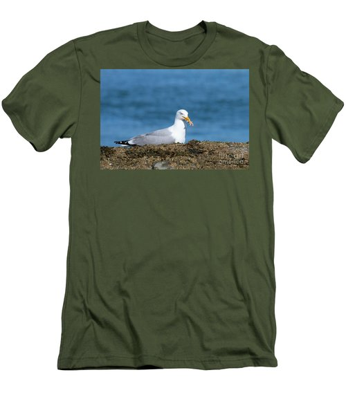 Men's T-Shirt (Athletic Fit) featuring the photograph Starfish Dinner by Debbie Stahre