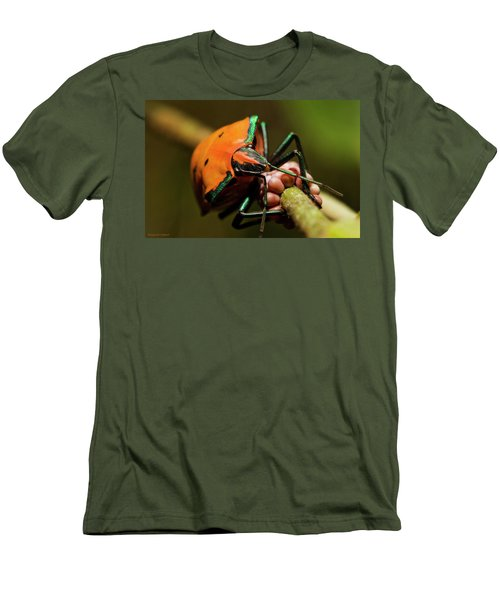 Stink Bug 666 Men's T-Shirt (Slim Fit) by Kevin Chippindall