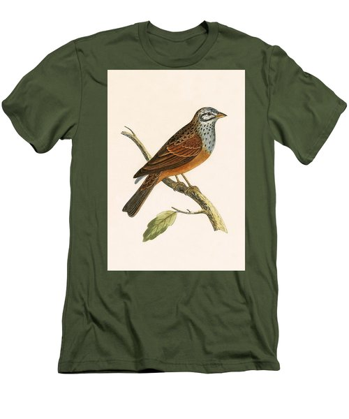 Striolated Bunting Men's T-Shirt (Slim Fit) by English School