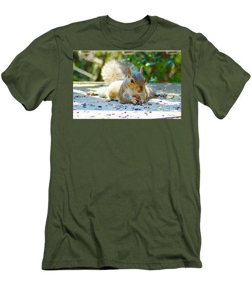 Sun Bathing Squirrel Men's T-Shirt (Slim Fit) by Kathy Kelly