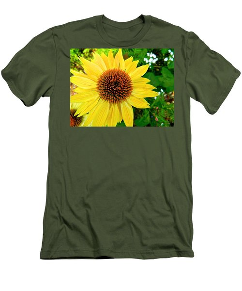 Sun Soaked Echinacea Men's T-Shirt (Athletic Fit)