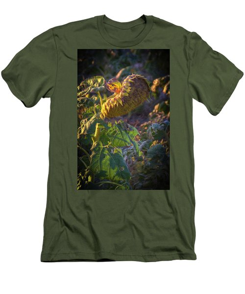 Sunflower Repose Men's T-Shirt (Athletic Fit)