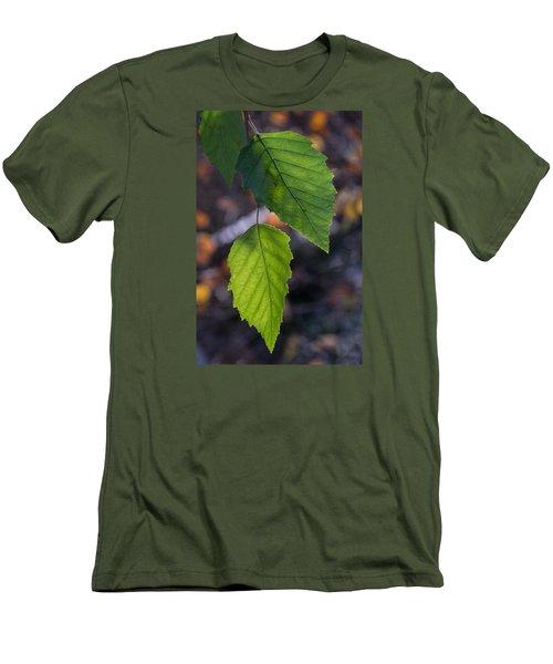 Sunlight Through Birch Leaf Branch Men's T-Shirt (Athletic Fit)