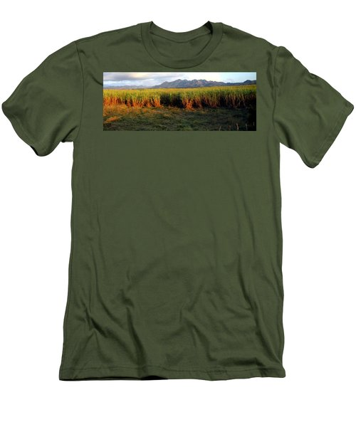 Sunlit Fields In Cuba Men's T-Shirt (Athletic Fit)