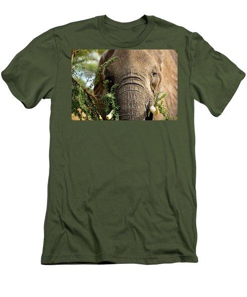 Tarangire 5 Men's T-Shirt (Athletic Fit)