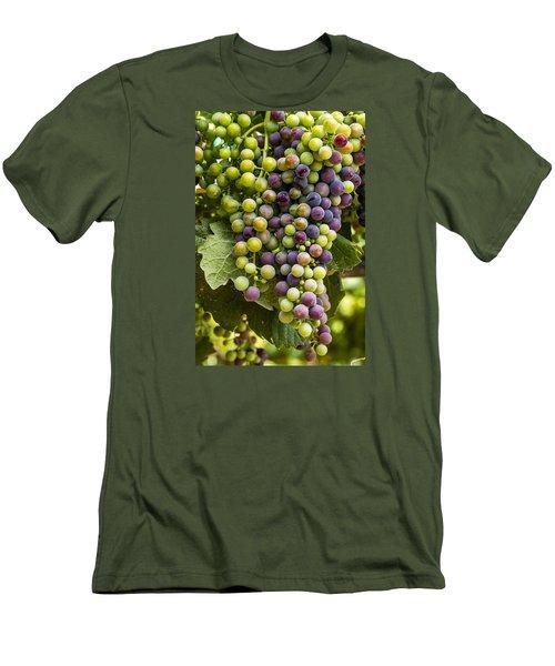 The Art Of Wine Grapes Men's T-Shirt (Slim Fit) by Teri Virbickis