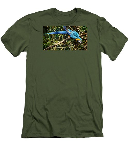 The Enchanted Forest Men's T-Shirt (Slim Fit) by Cameron Wood