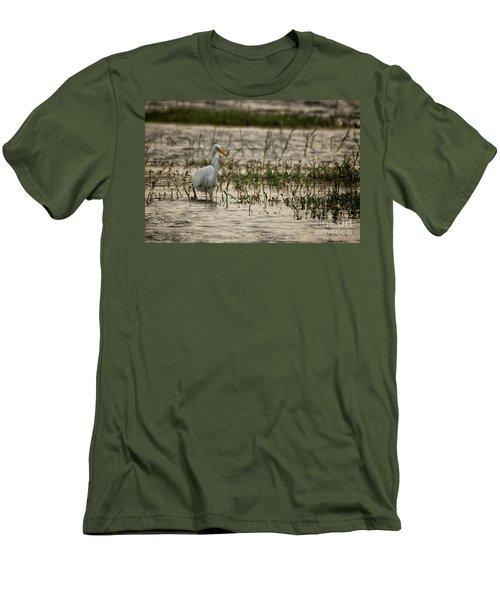 The Great Egret  Ardea Alba Syn  Casmerodius Albus  Men's T-Shirt (Athletic Fit)