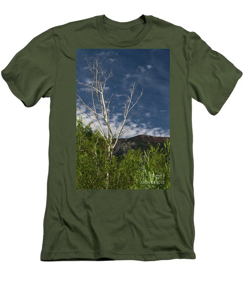 The Lonely Aspen  Men's T-Shirt (Athletic Fit)