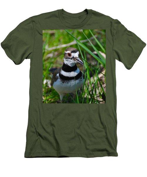 The Luminous Killdeer Men's T-Shirt (Athletic Fit)