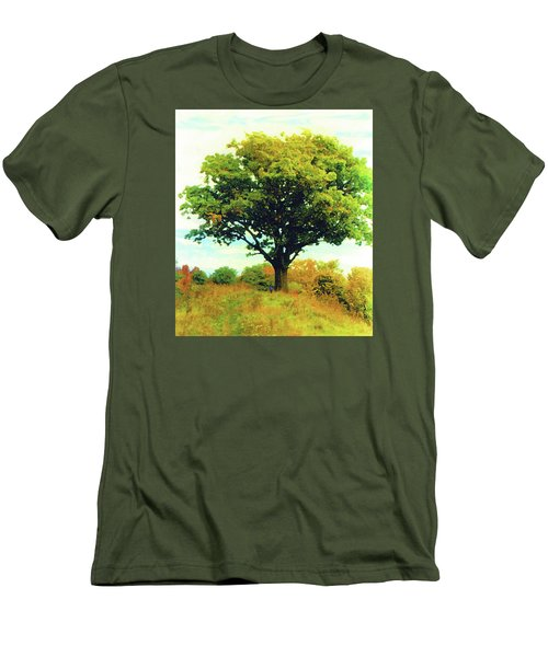 The Witness Tree Men's T-Shirt (Athletic Fit)