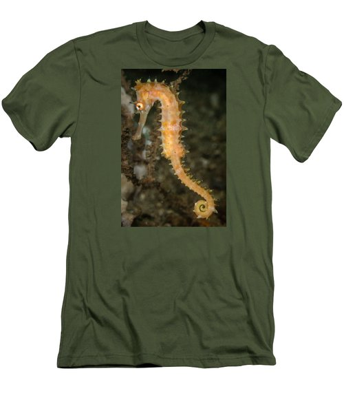 Thorny Seahorse Men's T-Shirt (Athletic Fit)
